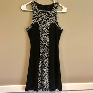 Buffalo Leopard Print Skater Dress